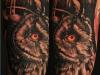 robert_franke_tattoo_realistic_owl