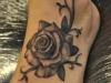 robert_franke_tattoo_rose
